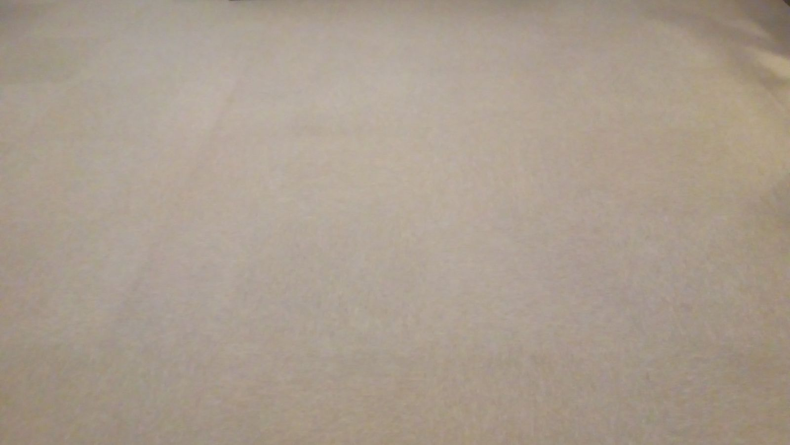 Long Ashton Cricket Club carpet after being cleaned by LDM Services