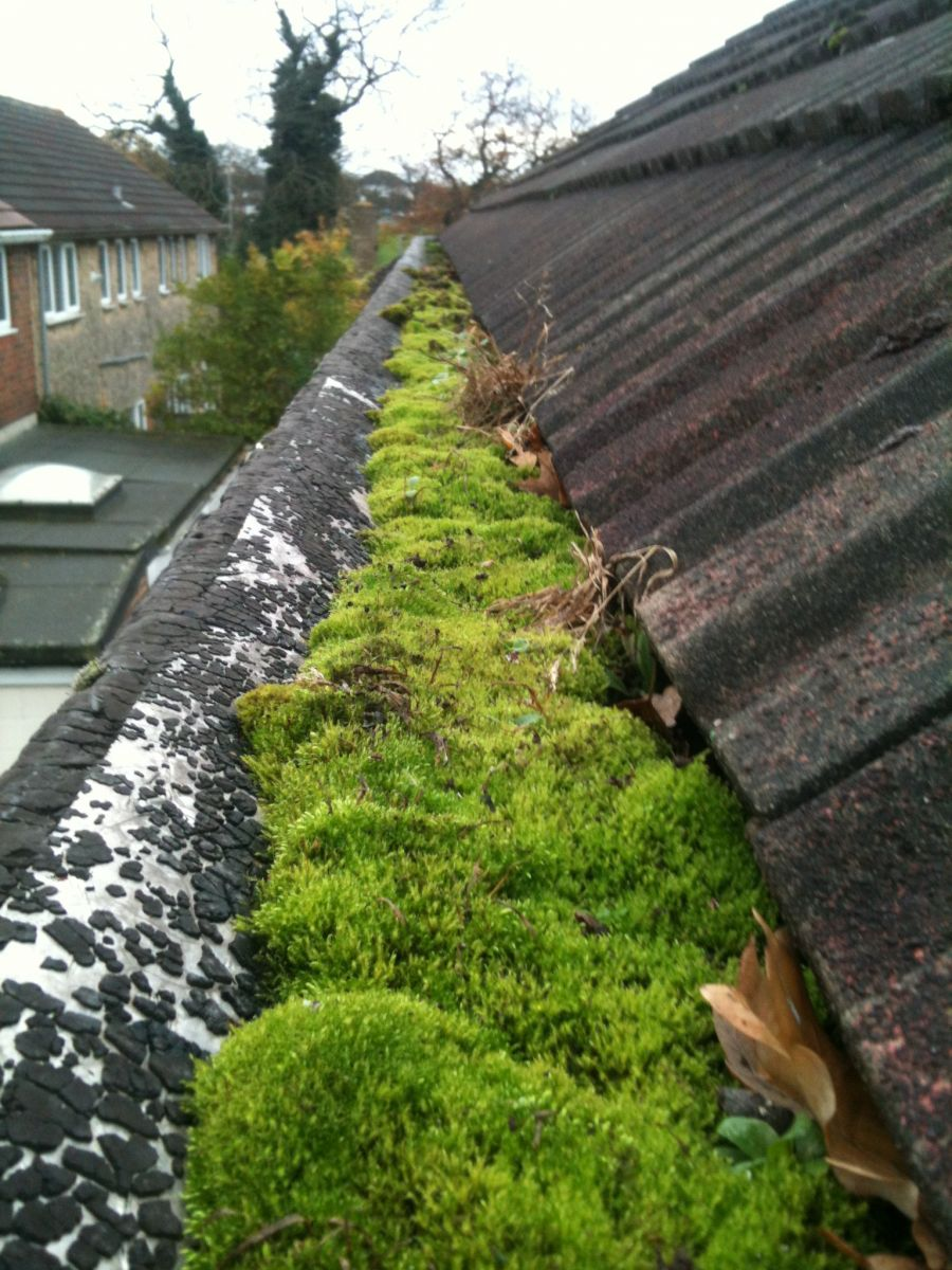 Before using the gutter vacuum system